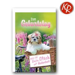 Faltkarte Geburtstag 40-0398