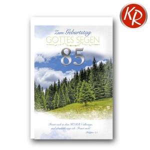Faltkarte zum 85. Geburtstag  45-9085